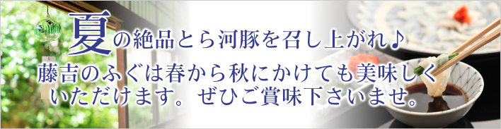 藤吉のふぐは春から秋にかけても美味しくいただけますので、ぜひご注文下さいませ