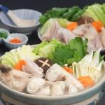 【送料無料】★最高級天然とらふぐちり鍋セット3~4人前〈野菜付き〉