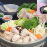 【送料無料】★最高級天然とらふぐちり鍋セット+とろける白子のセット4~5人前〈野菜なし〉