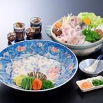【送料無料】★最高級天然とらふぐ料理セット2~3人前〈野菜付き〉